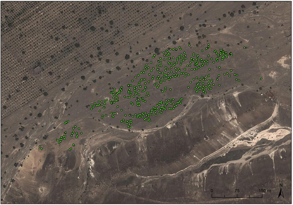 The Wadi Suq cemetery